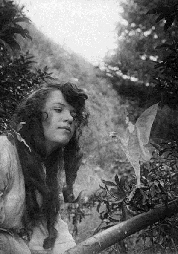 Cottingley Fairy